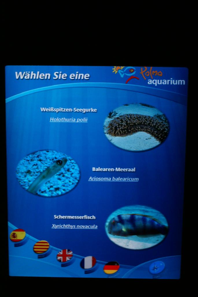 Palma de Mallorca, Spanien – Palma Aquarium